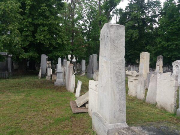 Jüdischer Friedhof Währing (Foto: Susanne Claudine Pils)